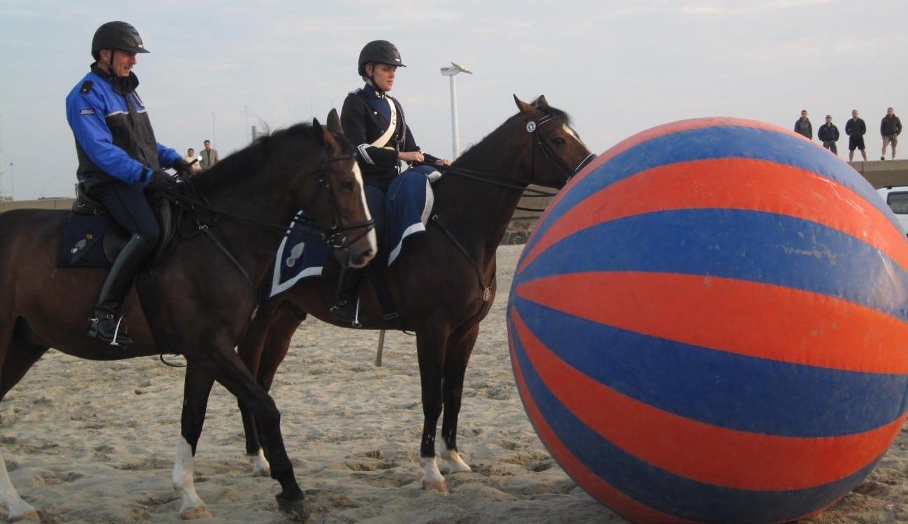 2009 foto strand paard IMG_3106